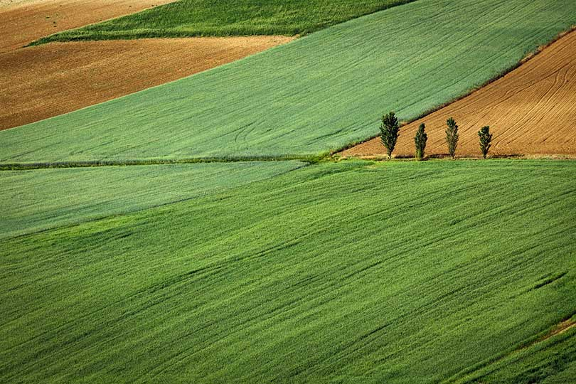 vanzare teren agricol avocat preemptor drepturi procedura